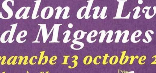 Icône Migennes 2013._cr